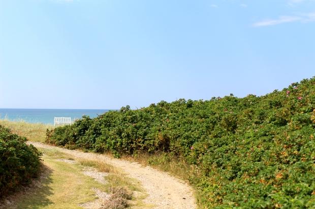Løkken beach bench