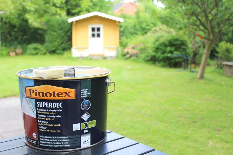 pinotex1