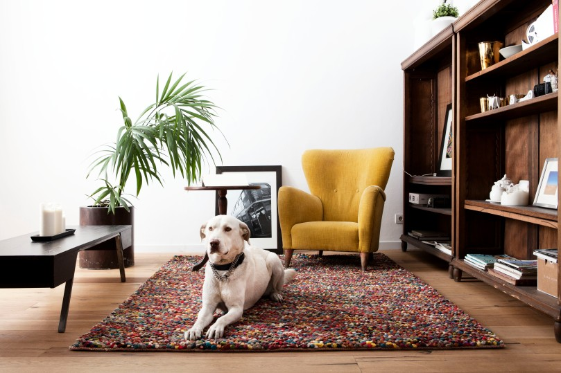 Indian felted woolen yarn rug